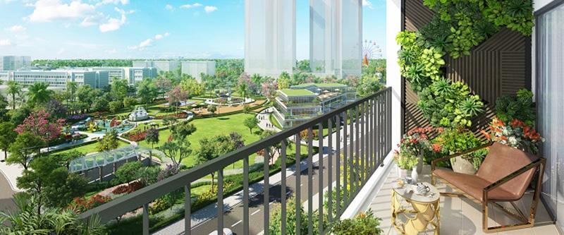 view nhìn của dự án