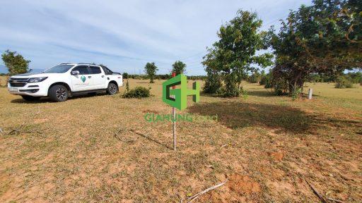 bán đất nông nghiệp bình thuận